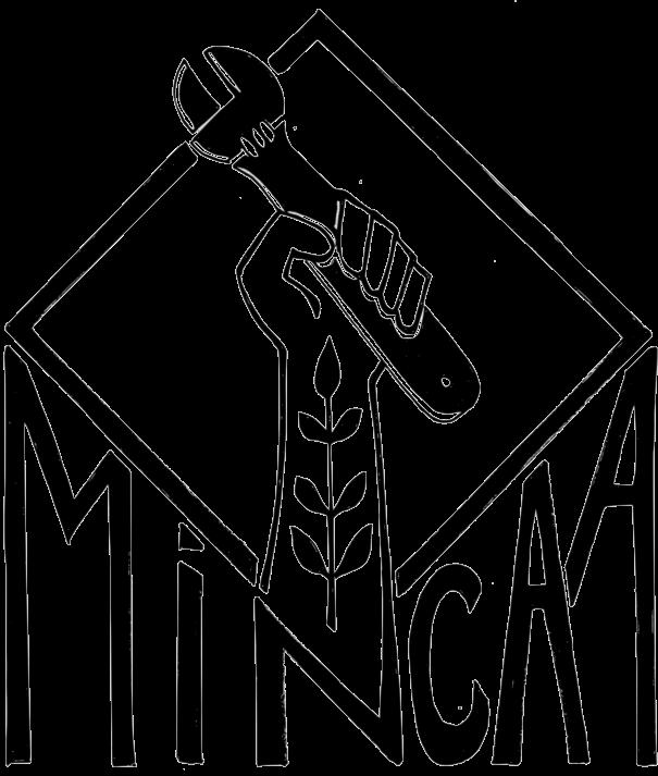MiNCAA